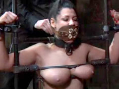 Heavy tits sub wants torture